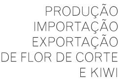 Produção, Importação Exportação de flores de corte e kiwi